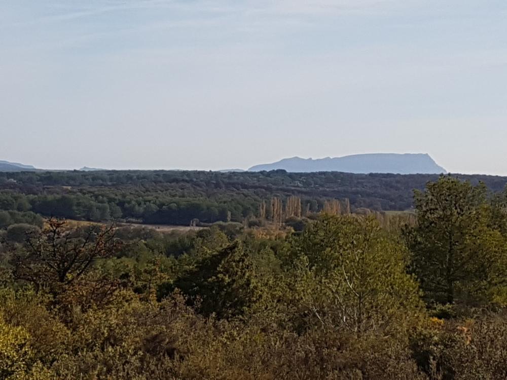 de la forêt du domaine, vue sur la sainte Victoire